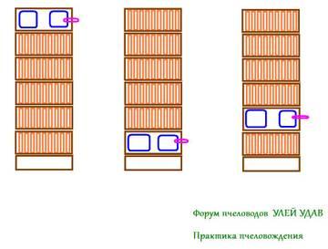 http://s6.uploads.ru/t/Nzgic.jpg