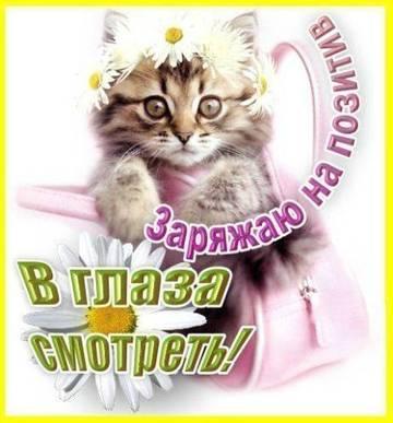 http://s6.uploads.ru/t/OnpE2.jpg