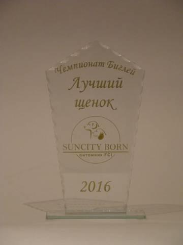 http://s6.uploads.ru/t/PLwOs.jpg