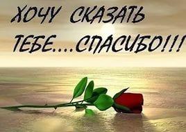 http://s6.uploads.ru/t/PRCgH.jpg