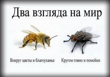 http://s6.uploads.ru/t/PV3QE.jpg