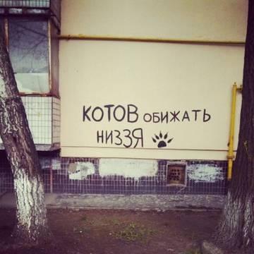 http://s6.uploads.ru/t/Q5qFl.jpg