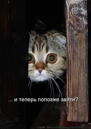 http://s6.uploads.ru/t/SFVQA.jpg