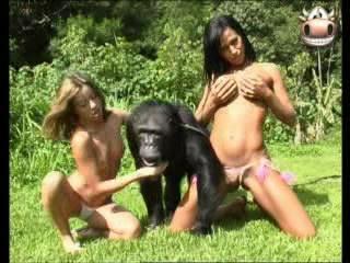 Зоо порно, зоофилия, секс с животными.смотреть секс людей с животными зоофи