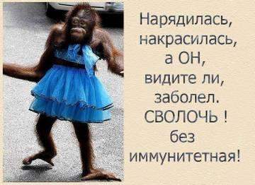 http://s6.uploads.ru/t/Sac8Q.jpg
