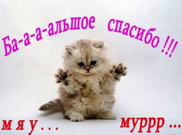 http://s6.uploads.ru/t/TVbYF.jpg