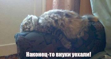 http://s6.uploads.ru/t/UAhCp.jpg