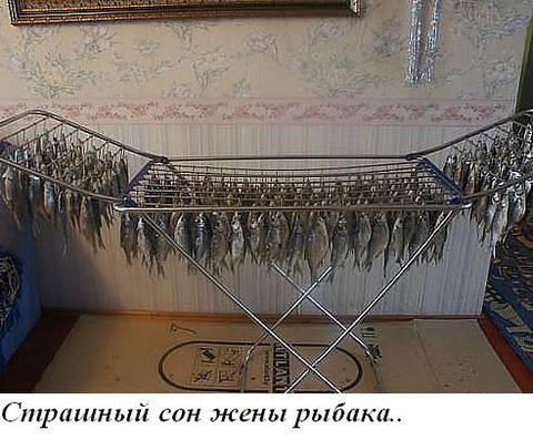 http://s6.uploads.ru/t/UEA09.jpg