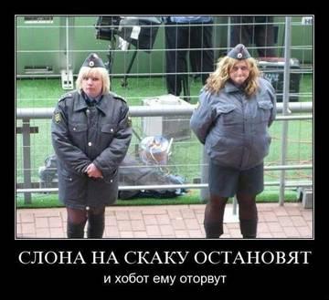 http://s6.uploads.ru/t/UWQqX.jpg