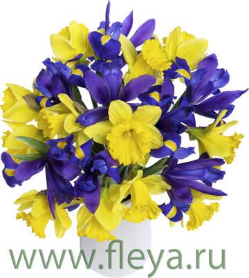 http://s6.uploads.ru/t/UhZIC.jpg