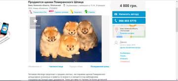http://s6.uploads.ru/t/UpWvI.jpg