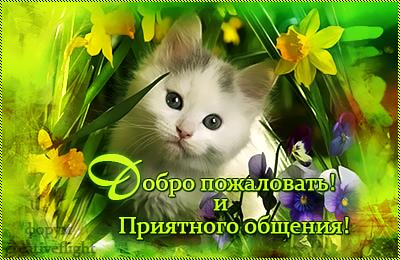 http://s6.uploads.ru/t/W5QOE.png