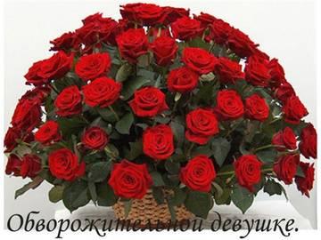http://s6.uploads.ru/t/WGJvT.jpg