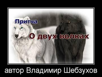 http://s6.uploads.ru/t/WMevG.jpg