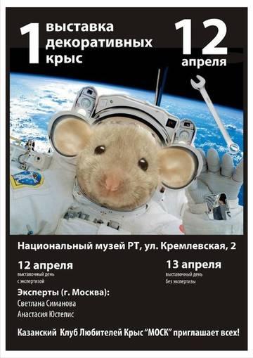 http://s6.uploads.ru/t/X8Coj.jpg