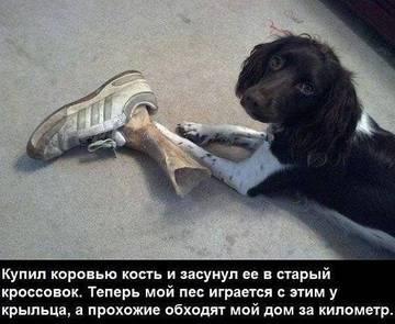 http://s6.uploads.ru/t/YLC7r.jpg