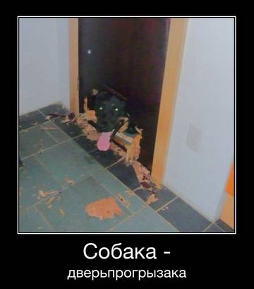 http://s6.uploads.ru/t/YOVqe.jpg