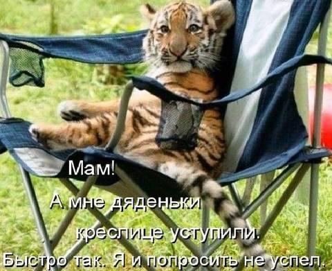 http://s6.uploads.ru/t/Yd4av.jpg