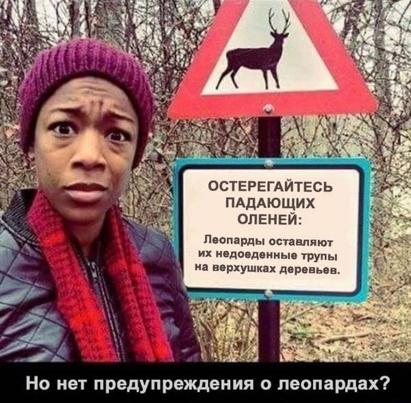 http://s6.uploads.ru/t/ZCLPd.jpg