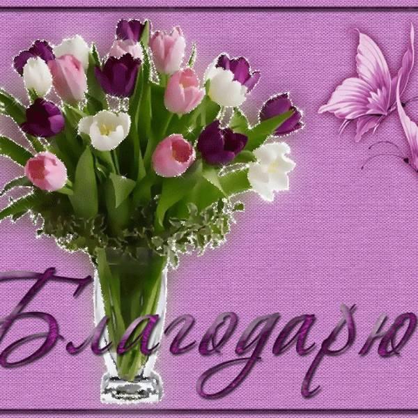 http://s6.uploads.ru/t/ZCrTp.jpg