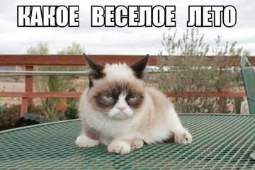 http://s6.uploads.ru/t/ZagId.jpg