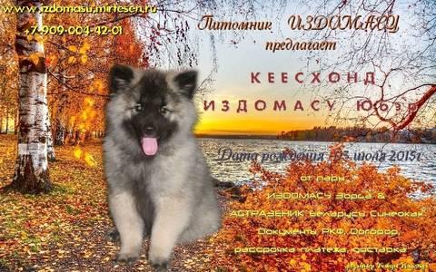 http://s6.uploads.ru/t/ZeUTV.jpg