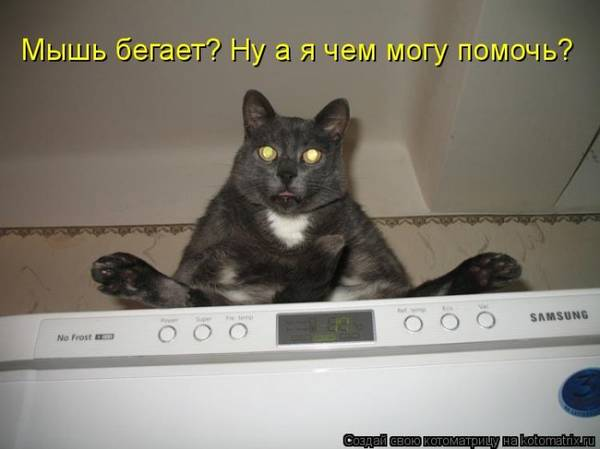 http://s6.uploads.ru/t/ZfadH.jpg
