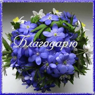 http://s6.uploads.ru/t/a96sL.jpg