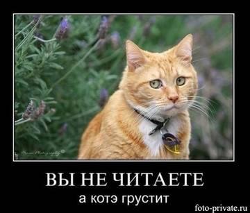 http://s6.uploads.ru/t/ar7M8.jpg