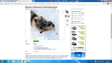 http://s6.uploads.ru/t/axgoe.png