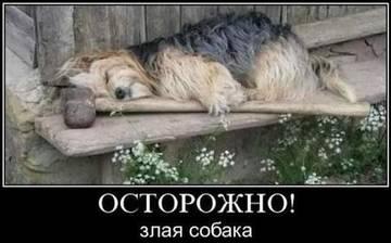 http://s6.uploads.ru/t/buCG7.jpg