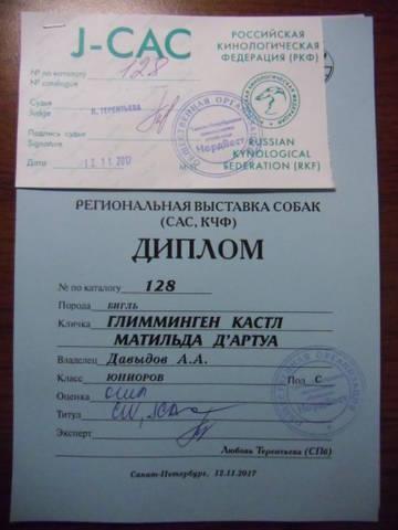 http://s6.uploads.ru/t/cPG5t.jpg