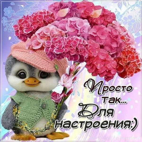 http://s6.uploads.ru/t/caGX4.jpg