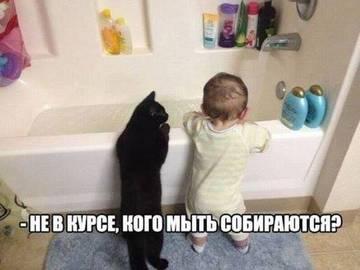 http://s6.uploads.ru/t/cb75U.jpg