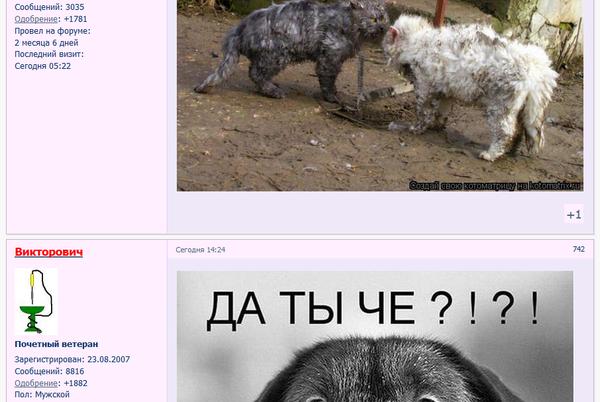 http://s6.uploads.ru/t/d1znS.png