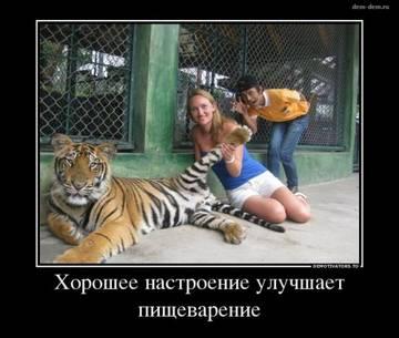 http://s6.uploads.ru/t/dEebQ.jpg