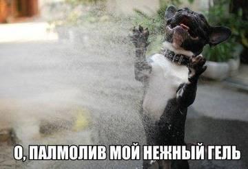 http://s6.uploads.ru/t/dTJg3.jpg