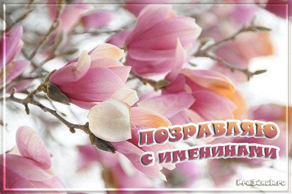 http://s6.uploads.ru/t/e1Mxd.jpg