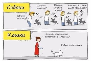 http://s6.uploads.ru/t/e2EKD.jpg