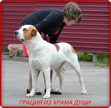 http://s6.uploads.ru/t/eFQcT.jpg