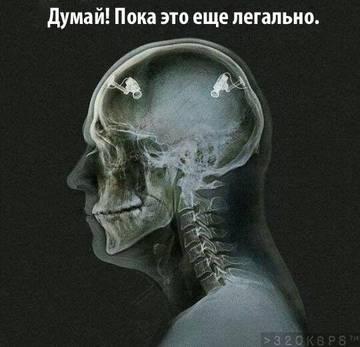 http://s6.uploads.ru/t/g6bE8.jpg