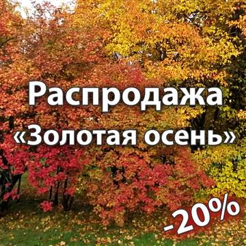 http://s6.uploads.ru/t/gc2Ch.jpg