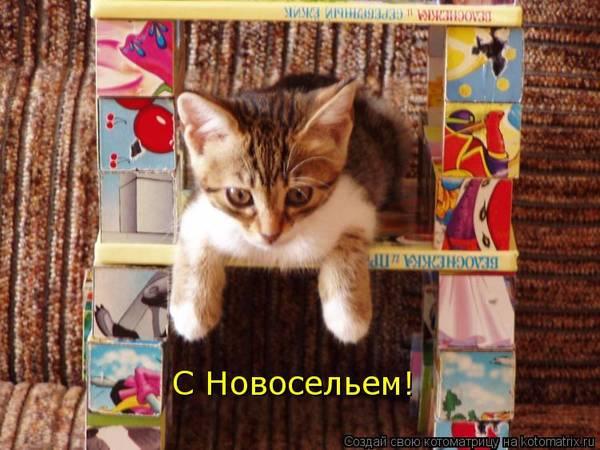 http://s6.uploads.ru/t/h00gE.jpg