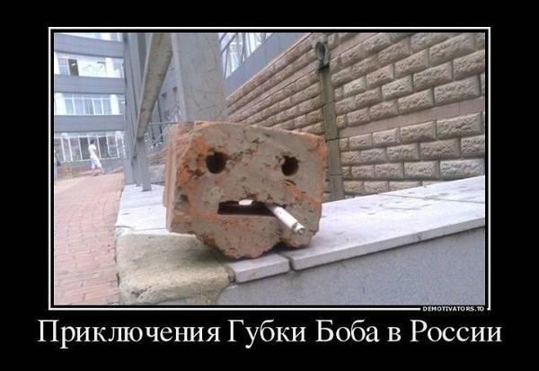 http://s6.uploads.ru/t/hnX8E.jpg