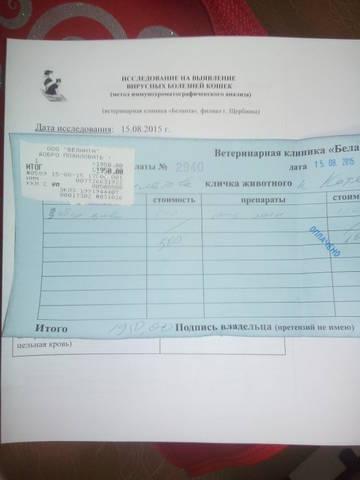 http://s6.uploads.ru/t/hp48O.jpg