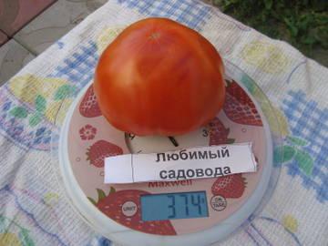 http://s6.uploads.ru/t/i5ohN.jpg