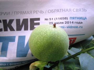 http://s6.uploads.ru/t/iBba7.jpg