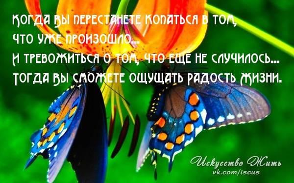 http://s6.uploads.ru/t/iCcML.jpg
