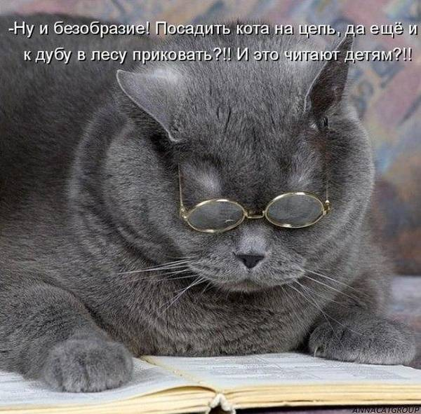 http://s6.uploads.ru/t/iOfGD.jpg