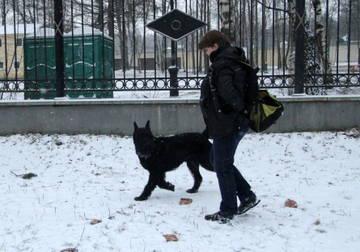 http://s6.uploads.ru/t/iqFhD.jpg